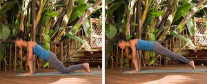 Plank Duo_Acefitness.org_image